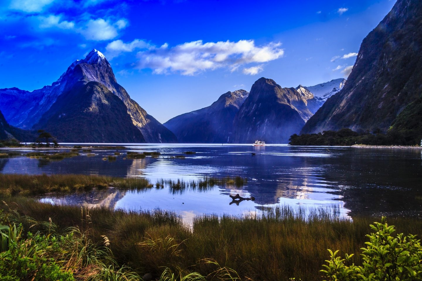 new zealand travel bucket list